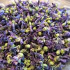 250 gr Yeni Mahsül Gül Hatmi Hatmi Çiçeği Çiçek
