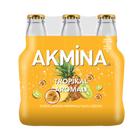 Akmina 6X200 ml Tropikal Aromalı Maden Suyu
