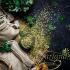 Aktarland 100 gr Dağ Kekiği