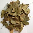 Ayvalık Baharat 50 gr Ginkgo Biloba Yaprağı