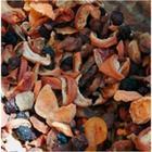 Betum Hoşaflık Karışık Kuru Meyve 250 gr