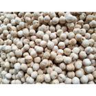Çerez Pazarı 500 gr Beyaz Leblebi
