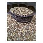 Dilek Kuruyemiş 250 gr Mısır Kavurga