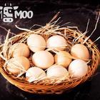 Doğaltat 10'lu Köy Yumurtası