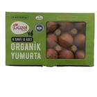 Ekotime 15'li Organik Yumurta