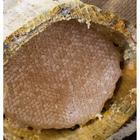 Gurmepark 1 kg Bingöl Şekersiz Karakovan Kütük Dağ Balı