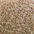 Kurtuluş Kuruyemiş 500 gr Çiğ İç Ayçekirdeği