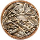 Natulife 250 gr Dakota Tuzsuz Ayçekirdek