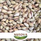 Nutova 250 gr Siirt Fıstığı