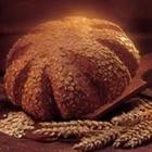 Puratos 20 kg Tegral Kepek Ekmeği Karışımı