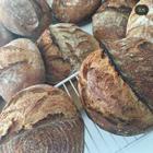 Yabyoo Ekşi Mayalı Ekmek