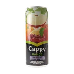 Cappy Bahçe Karışık 12x330 ml Kutu Meyve Suyu