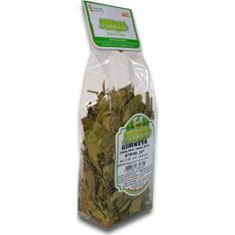 Florest 30 gr Gymnema Yaprağı Bitkisel Çay