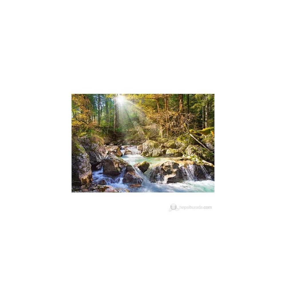 Castorland The Forest Stream 2000 Parça Puzzle