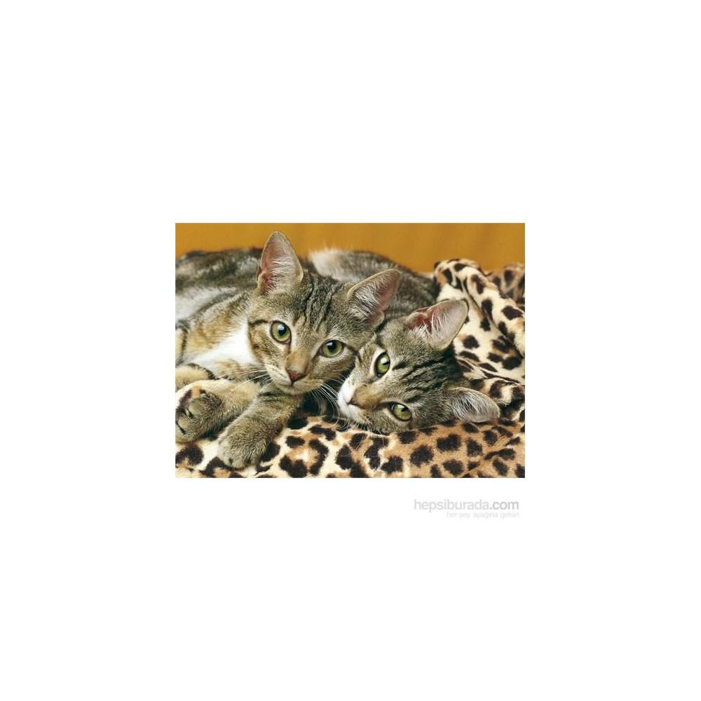 Clementoni Eyes Of The Cats 1000 Parça Puzzle