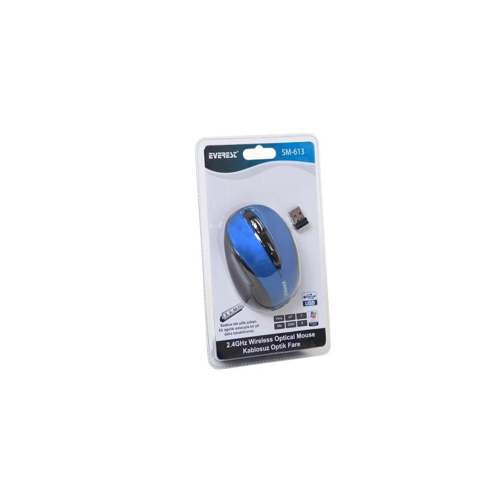 Everest SM-613 Mavi Mouse