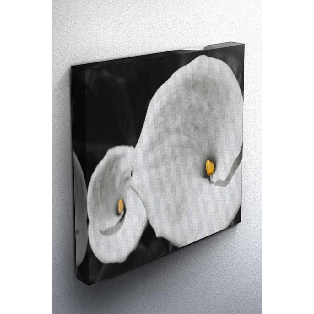 Tabloshop Calla Lilies B&W Kanvas Tablo