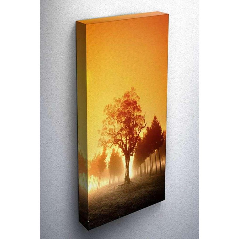 Tabloshop Foggy Tree Kanvas Tablo