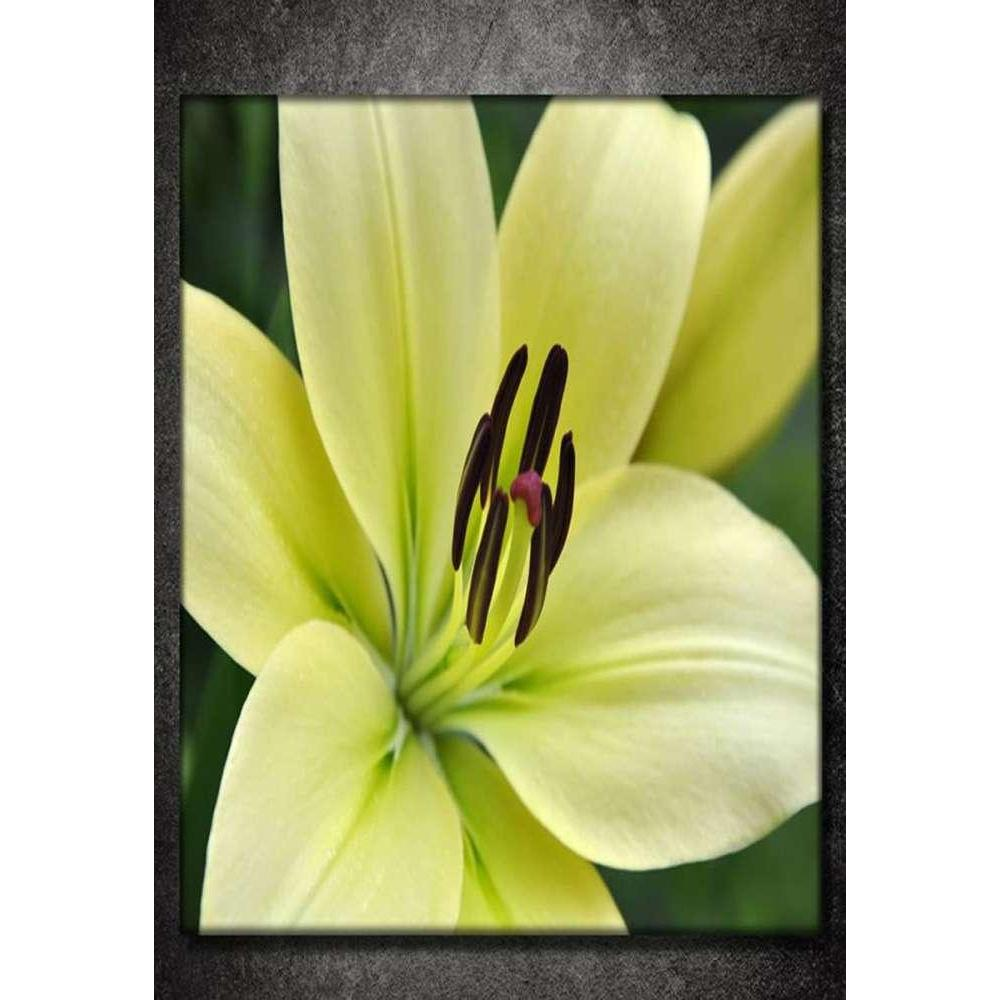 Tabloshop Green Lilies Kanvas Tablo