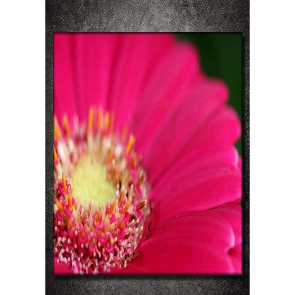 Tabloshop Pink Flower II Kanvas Tablo