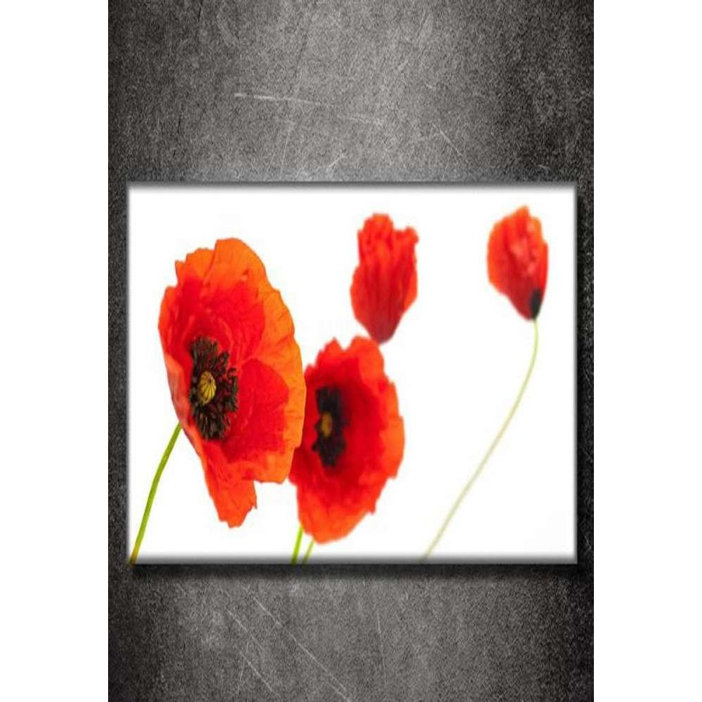 Tabloshop Poppies On A White Field Kanvas Tablo