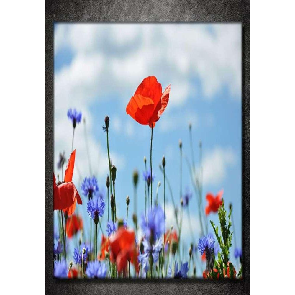 Tabloshop Poppy Fields II Kanvas Tablo