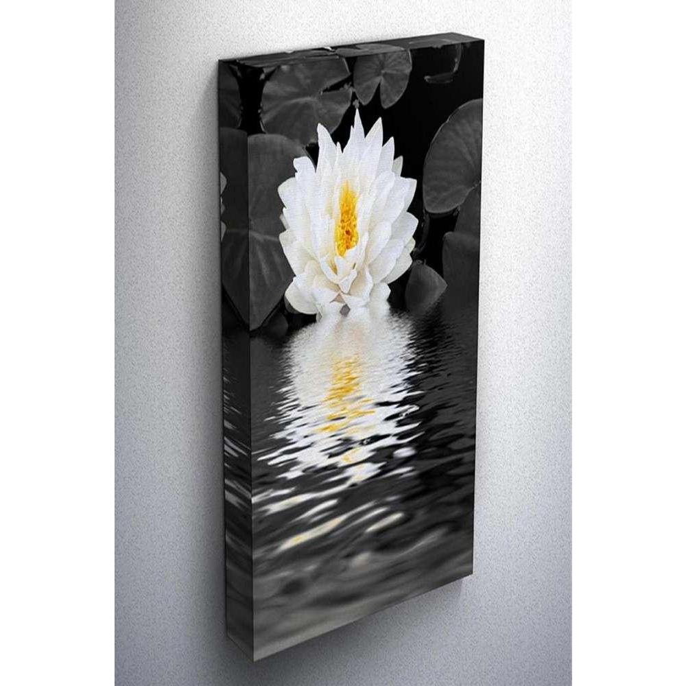 Tabloshop Water Lily Kanvas Tablo