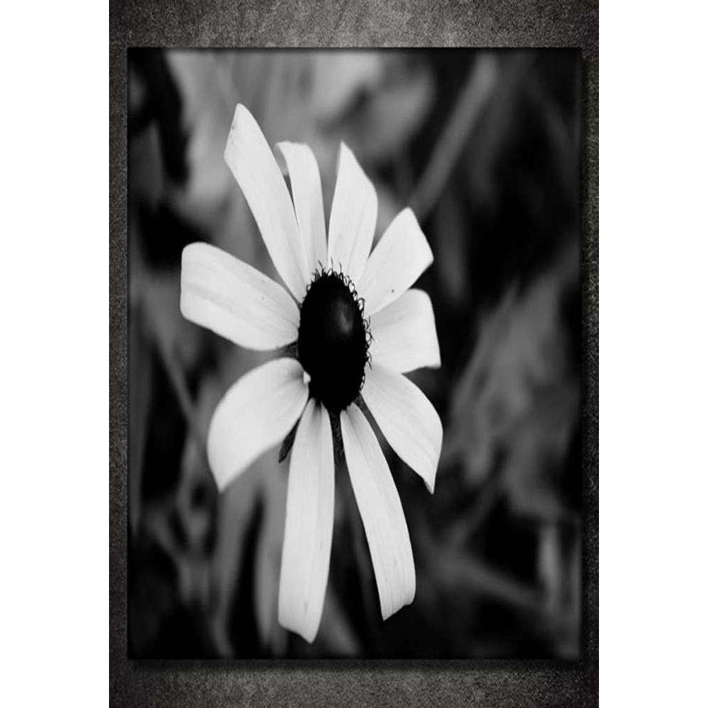 Tabloshop White & Black Daisy Kanvas Tablo