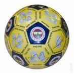 Fenerbahçe 2007 Futbol Topu